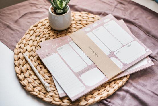 Týdenní plánovač A4 růžový s listy a květinami